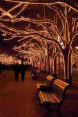 Berlin under the linden trees in Christmas — Stock Photo