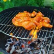 Grilling chicken — Stock Photo #16162309