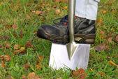 Spade shovel — Stock Photo