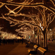 Berlin Under Linden Trees christmas — Stock Photo #17634013