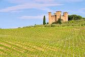 Castello delle quatro torra — Stock Photo