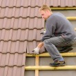 Tile roof covering - Photo