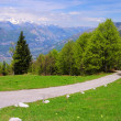Stock Photo: Monte Baldo