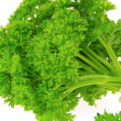 Parsley — Stock Photo #17855225