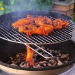 Grilling chicken — Stock Photo #17869273