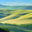 Tuscany hills - Stock Photo