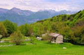 монте бальдо, италия — Стоковое фото