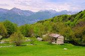 Monte baldo, italië — Stockfoto