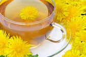 Tea dandelion — Stock Photo