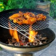 Grilling chicken — Foto de stock #18629259