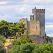 Stock Photo: Beaucaire Burg - Beaucaire castle 02