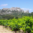 Les Baux-de-Provence 03 — Stock Photo #19955947