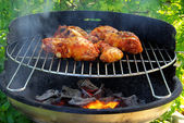 Grilling chicken 03 — Stock Photo