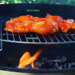 Grilling chicken — Stockfoto #21246955