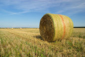 Bale of straw 26 — Stock Photo