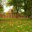 Stock Photo: Greifswald Abbey 10