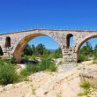 Stock Photo: Pont Julien 15