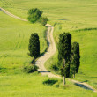 Tuscany hills 21 — Stock Photo