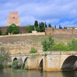 Ciudad Rodrigo — Stock Photo