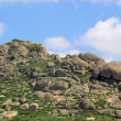 Valencia de Alcantara granite rock landscape  — Stock Photo