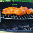Grilling chicken — Stock Photo #24889115
