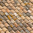 Stock Photo: Roofing tile