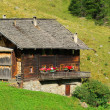 Chalet — Stock Photo #28092925