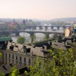 Prague bridges — Stock Photo #28770479
