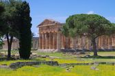Paestum — Stock Photo