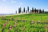 Tuscany house and flowers — Stock Photo