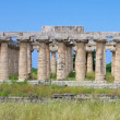 Stock Photo: Paestum 04