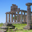Paestum 16 — Stock Photo