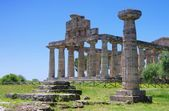 Paestum 16 — Photo