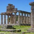 Paestum — Stock Photo #30182463