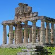Paestum — Stock Photo #30942601