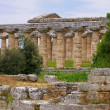 Paestum — Stock Photo #31142913