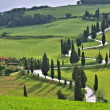 Cypress curve — Stockfoto