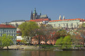 Prague cathedral — Stock Photo