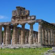 Paestum — Stock Photo #33237879