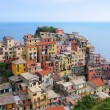 Manarola, Cinque Terre — Stock Photo