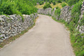 Cres dry stone wall and way — Stock Photo