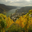 Stock Photo: Oberwesel