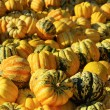Ornamental pumkin — Stock Photo #34099649