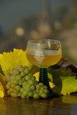 新しいワイン — ストック写真