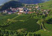 Spitz in Wachau — Stock Photo