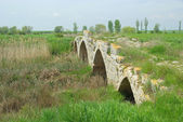 Sasamon roman bridge — Stock Photo