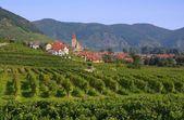Weissenkirchen in Wachau — Stock Photo