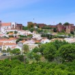 Silves — Stock Photo #36365185