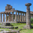 Foto Stock: Paestum originally Posidonius - Greek colony