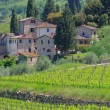 Panzano in Chianti — Stock Photo #36969387